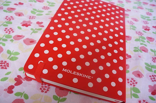 moleskine-minnie5